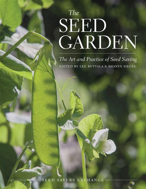 saving eggplant seeds organic gardening mother earth news