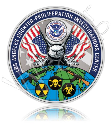 department of homeland security dhs custom chips
