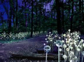 longwood gardens lights reminder longwood gardens blockbuster light installation