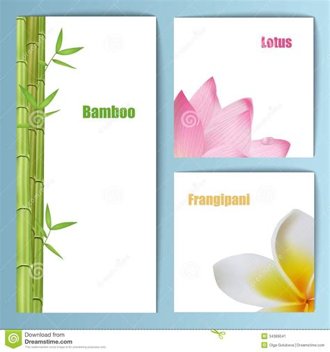layout design of invitation exotic tropical flowers invitation card layout stock image