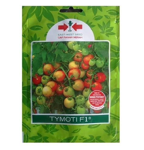 Benih Sengon Per Kg benih tomat tymoti f1 1 750 biji panah merah bibitbunga