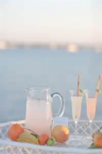 Citrus Cocktail Drink