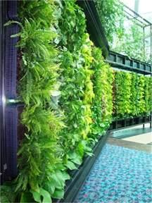 inside urban green vertical gardens