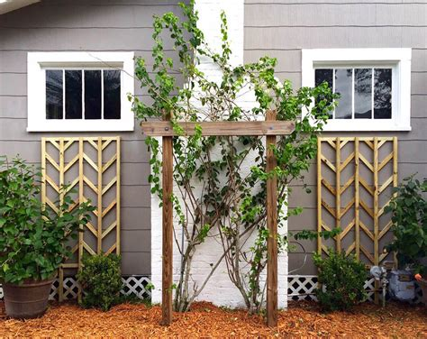 Trellis Home 24 Best Diy Garden Trellis Projects Ideas And Designs