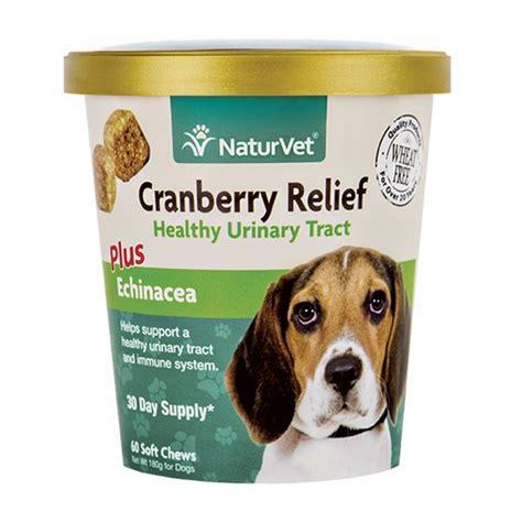 cranberry pills for dogs naturvet cranberry relief plus echinacea soft chews for dogs 60 count