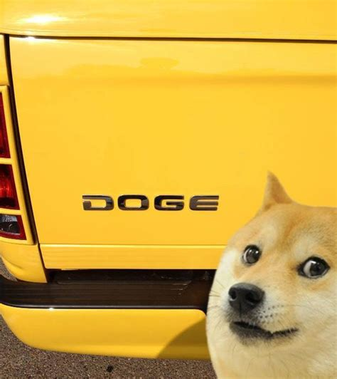 Doge Meme Origins - image 629839 doge know your meme