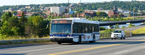Fredericton Criminal Record Check Fredericton Transit City Of Fredericton