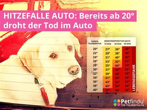 Hund Im Auto Hitze by Hitzefalle Auto Bereits Ab 20 176 Droht Der Tod Im Auto