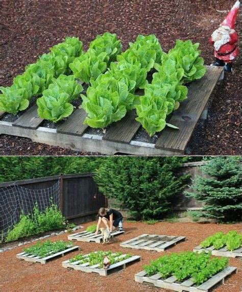 Pallet Garden Bed by Pallets For Raised Beds Garden