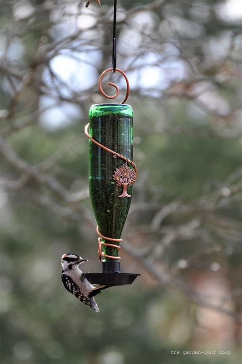 Diy Glass Bird Feeders s bird gardens diy glass bottle bird feeders
