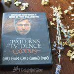 pattern of evidence dvd when we last spoke novel giveaway a delightful glow