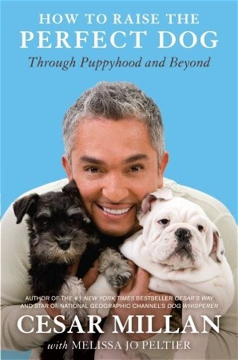 puppyhood a trained puppy a happy owner the how to raise the through puppyhood and beyond
