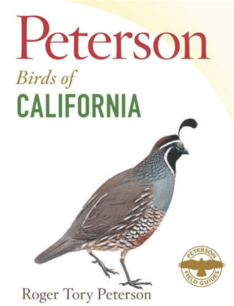 Book Review Dating Big Bird By Zigman by Peterson Field Guide To Birds Of California By Roger