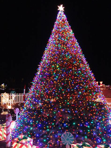 11 awesome and dazzling christmas tree lights ideas
