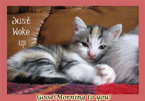 good morning ecard  good morning ecards greeting cards