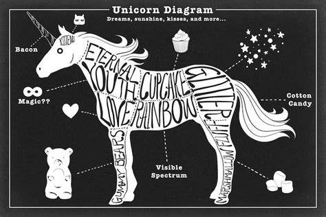 unicorn diagram unicorn anatomy diagram canvas print by 5by5collective