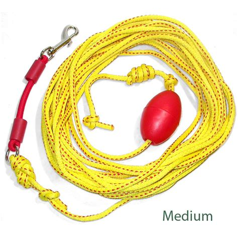 long leash for backyard long leash for backyard 28 images long leash for