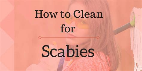 Do Bed Bugs Scabies