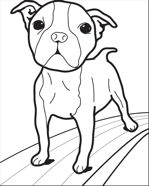coloring pages of little dogs free printable small dog coloring page for kids supplyme