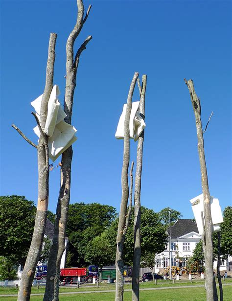 by the sea 2015 sculpture by the sea 2015