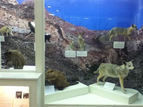 Centennial Museum And Chihuahuan Desert Gardens by Utep Centennial Museum Mt Cristo Dinosaur Track