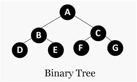 bitwise pattern in c binary tree in c using recursion the crazy programmer