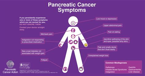 cancer symptoms image gallery inflamed pancreas causes