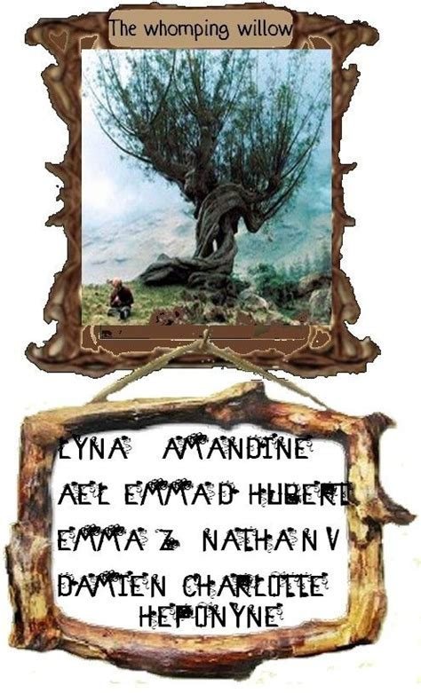 clara mandrake s books whomping willow projet harry potter