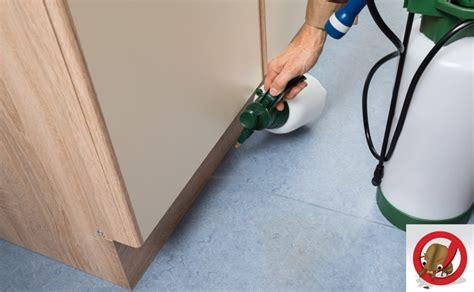 dealdey anti termite treatment wood furniture