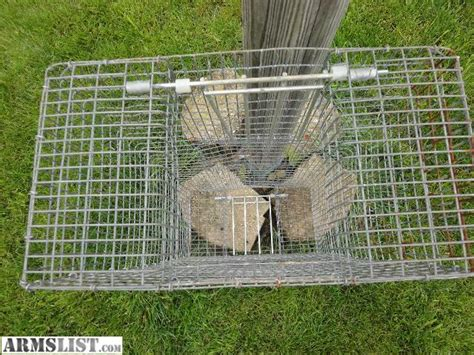 how to trap pigeons for armslist for sale pigeon trap bird holder