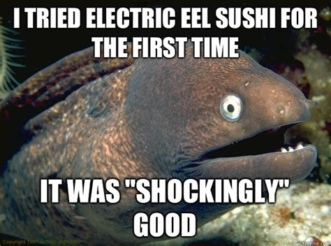 Eel Meme - i tried electric eel sushi for the first time it was quot shockingly quot good bad joke eel quickmeme