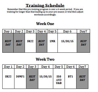 pro soccer program 6 weeks