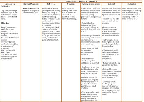 palliative care plan template development of standard operating procedures and care
