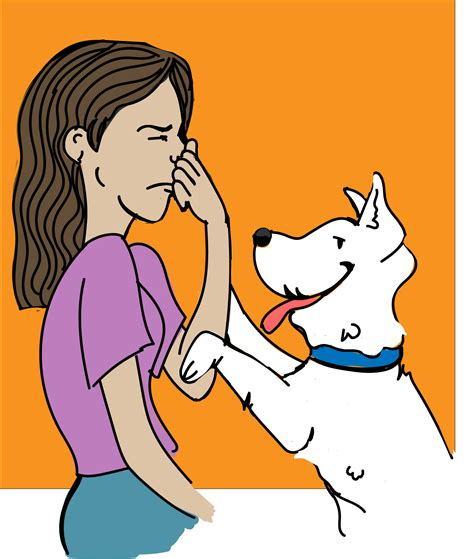 bad breath in dogs bad breath the best advice you could get simplewag