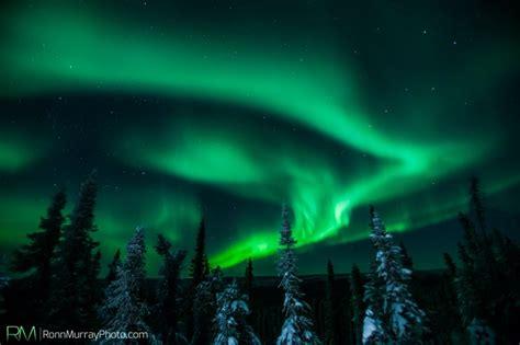 Fairbanks Northern Lights by Northern Lights Fairbanks Alaska Northern Lights
