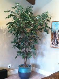 Artificial Trees Home Decor by Artificial Trees And Artificial Plants From Artificial