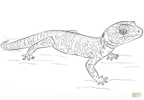 Greg Is Gekko From Pj Masks Coloring Pages Coloring Page Gecko Insect Coloring Page