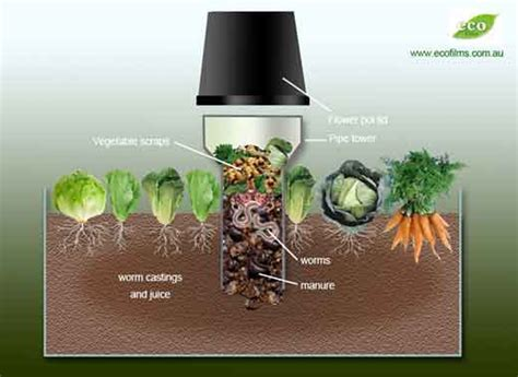 Composting Apartment Therapy Build A Worm Tower To Spread Compost Your Garden