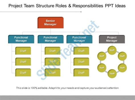 Project Team Structure Roles And Responsibilities Ppt Team Roles And Responsibilities Ppt
