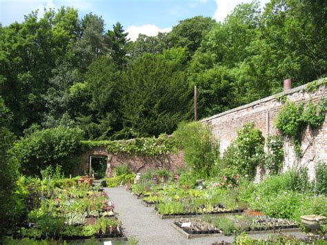 File Chesters Walled Garden Parts Of The Walls And Walled Gardens For Sale