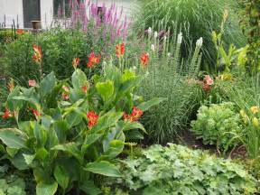 Perennial Flower Gardens Flowers On Friday Perennial Garden Up Bird Brains Tales