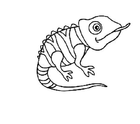 chameleon coloring page pascal the chameleon coloring pages coloring pages