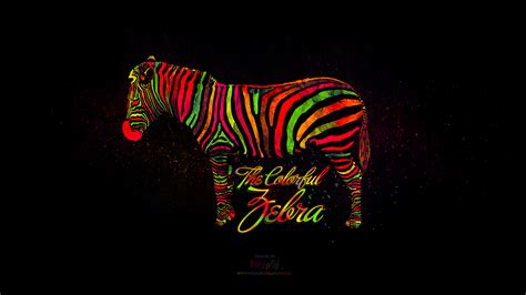 colorful zebra wallpaper wallpaper the colorful zebra by h2ssprod by h2ssprod on