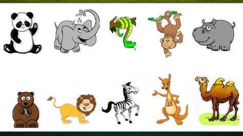 Imagenes De Animales De Zoologico Animados | animales del zool 211 gico en franc 201 s pronunciaci 243 n
