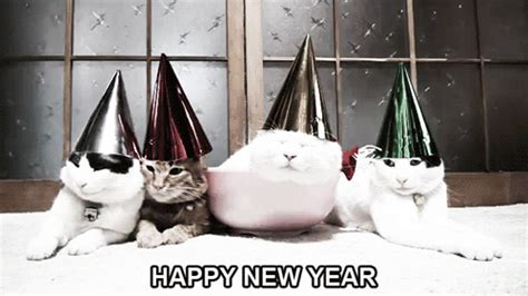 happy new year gif happy new year gif happy year new gifs say more with tenor