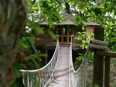 hanging tree house designs bloombety tree house hotels with hanging bridge tree house hotels design architecture