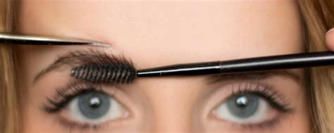 how to trim you eyebrows with clippers wiki with pictures trimming your brows miss elegant uk threading hair