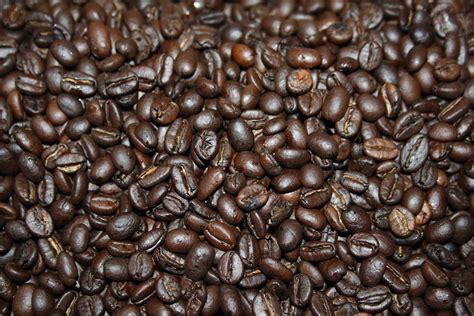 what is light roast coffee dark roast kenyan coffee cananut