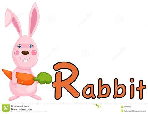 R Rabbit animal alphabet r for rabbit royalty free stock