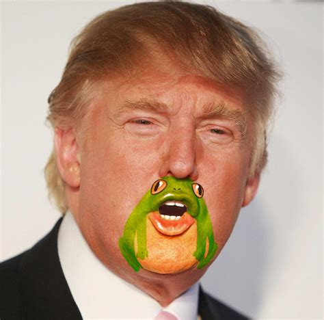 you ll never be able to unsee this frog on trump s chin